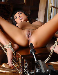 Dildo machine pleasures with ladies